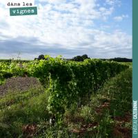 Rogner la vigne
