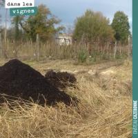 Le rôle du compost