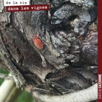 Les araignées rouges