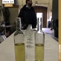 L'élevage des vins