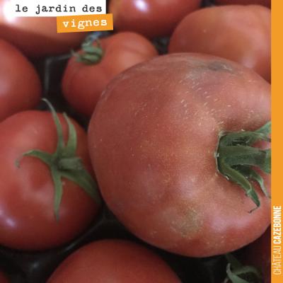 De bonnes tomates pleine terre, issues du jardin potager de Mounissens (le domaine de David le di...