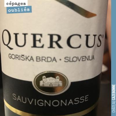 La sauvignonasse est un cépage historique de Bordeaux. Elle portait aussi le nom de Sauvignon ver...