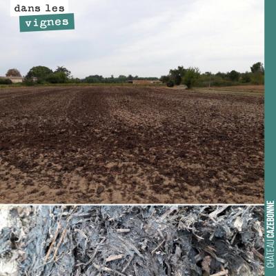 Nous avons épandu au final, 120 tonnes de fumier sur 2,5 hectares pour nos futures plantations su...