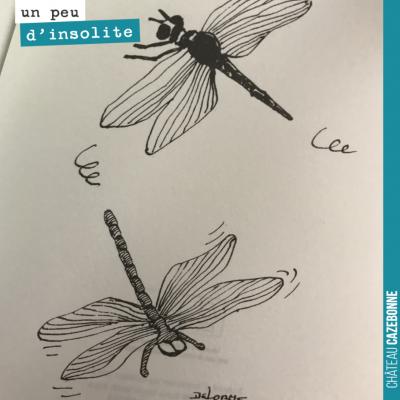 C'est beau une libellule, non ? Dessin de Delorme dans la Stratégie de la libellule de Thierry Marx.