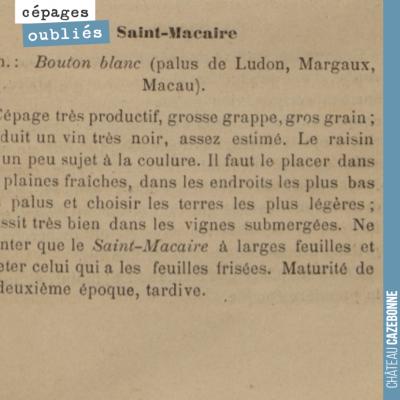 On adore le Saint-Macaire que l'on a eu le loisir d'aller déguster chez Liber Pater, au nez des n...