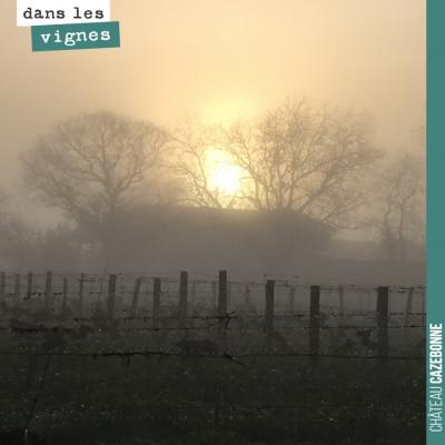 Magnifique lever du soleil dans la brume.