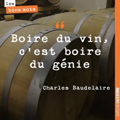 La sagesse incarnée, Baudelaire !