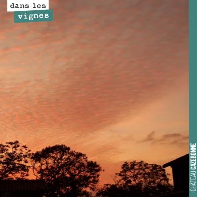 Jolies couleurs au coucher du soleil en ce début d'automne.