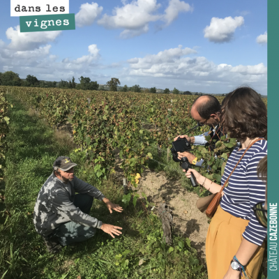 David explique à l'équipe de Winefunding pourquoi il est important d'avoir des sols vivants et qu...