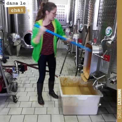 Marion écoule une cuve de semillon qui a maintenant parfaitement fini ses fermentations. On a ram...