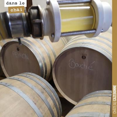 Les fermentations en barriques sont terminées sur les blancs. On fait donc les soutirages pour sé...