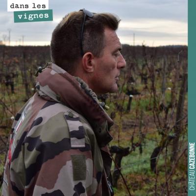 La vigne demande beaucoup d'interventions humaines tout au long de l'année, de la taille à la réc...