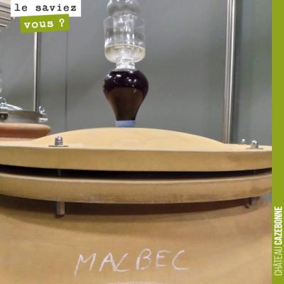 Le malbec était au 19ème siècle un des cépages les plus répandus en Gironde. Il représentait 25% ...