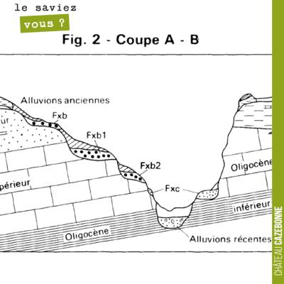 Cette coupe géologique du Langonnais, de Aubiac à Monprimblanc, sur la rive droite, passe, pratiq...