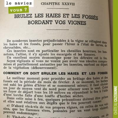 Cette recommandation qui peut paraître étrange aujourd'hui, figure dans 'Le vigneron d'aujourd'hu...
