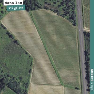 Notre îlot de Peyrous sur la commune de Mazères. 7 hectares d'un seul tenant dont un parcelle de ...