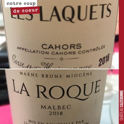 Dégustation comparée de deux classiques de l'appellation Cahors sur le cépage Malbec. Cosse-maiso...
