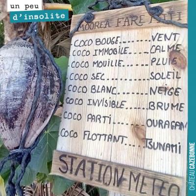 On pense à adapter nos vignes le principe ingénieux de cette station météo à Tahiti.