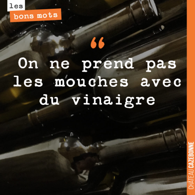 J'adore cette citation !