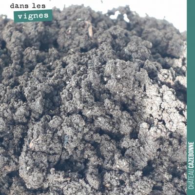 La Maria Thun ou compost de bouse que nous avons préparée l'année dernière est magnifique, très r...
