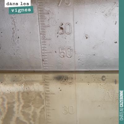 On a pris un peu plus de 40mm de pluie, ces dix derniers jours. Pluie salvatrice à ce stade, car ...