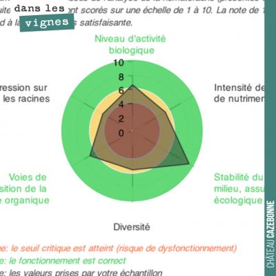 Nous avons fait faire une analyse de la vie de nos sols, sur la parcelle de Darche. Il s'agit de ...