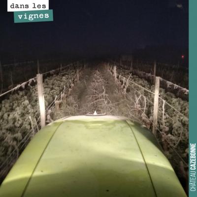 Broyage des sarments tôt le matin. On profite des sols gelés pour ne pas tasser les sols. Parce q...