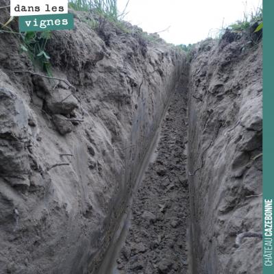 On a commencé grâce à vous (Crowdfunding en cours) les travaux de drainage de notre parcelle du M...