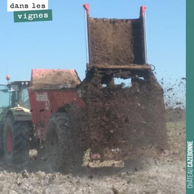 30 tonnes de fumier par hectare sur cette plantation ! Rien de mieux que le fumier bien composté ...