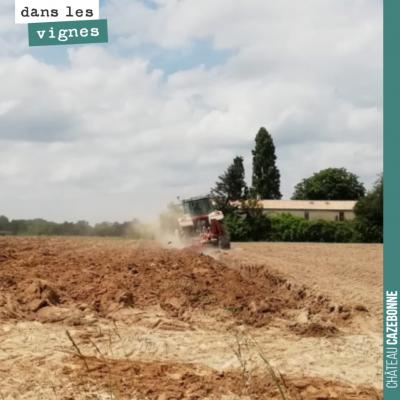 On a travaillé le sol pour la plantation. On plante mardi.